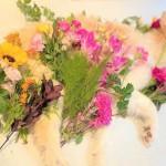 リル、花々に囲まれて