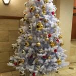 10分更新 手抜き主婦のクリスマス(願いは濃いめ)