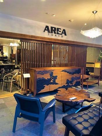 area (18)
