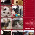 703号室愛のカレンダー