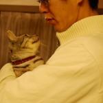 (再)ロッソ、縁を掴むまで(野良猫が幸せをつかむまで)