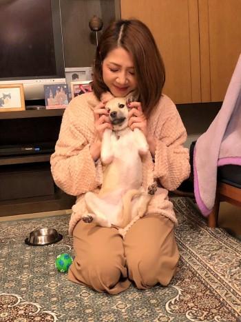 puppy (4)